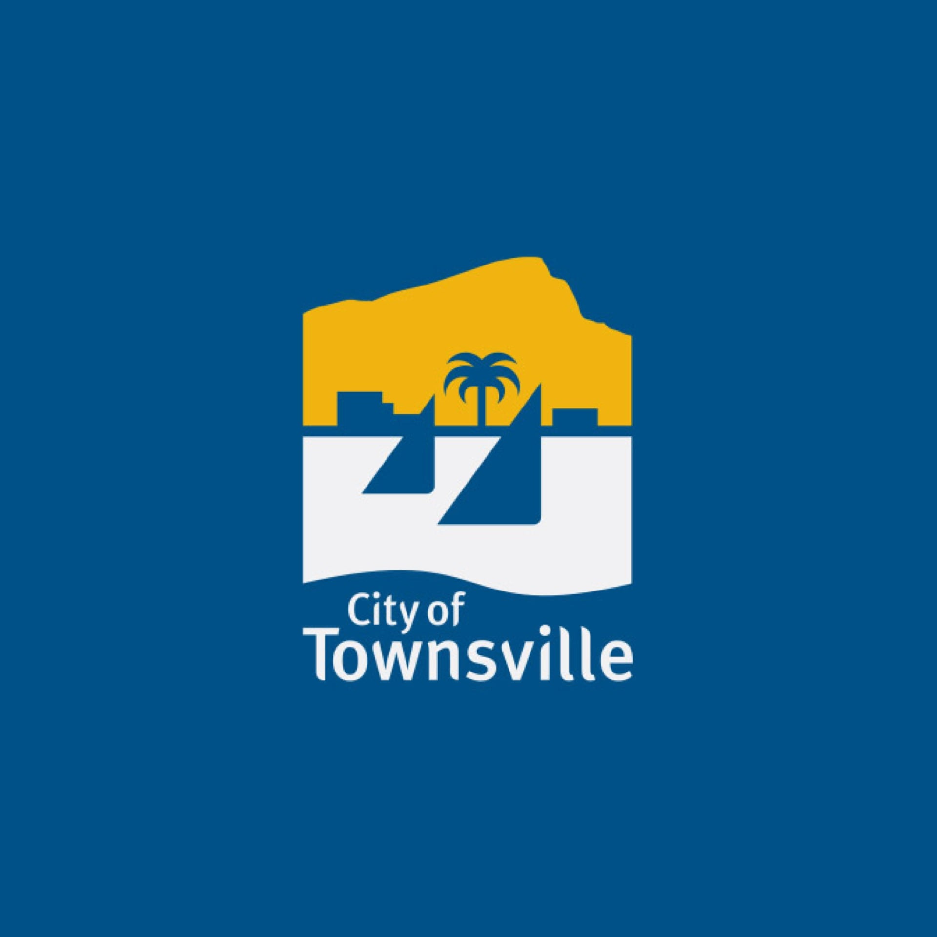 Modernised ticketing for the Townsville arts community proves successful